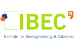 logo IBEC new