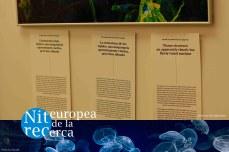 ERN15_10 copy